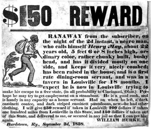 $150 Reward For Runaway